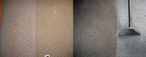 watr damage - carpet restoration - Memphis, TN
